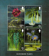 Montserrat 2013 MNH Blossoming Plants Blue Water Lily 4v M/S Flowers Stamps