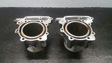 98-03 Aprilia RSV 1000 Mille Engine Jugs  Cylinders 99 2000 01 02 03 OEM
