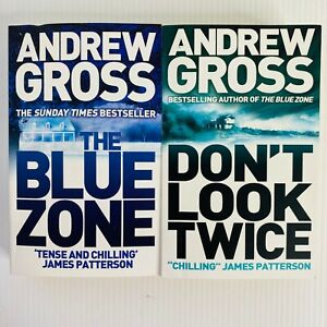 2 x Andrew Gross Paperback Books Don't Look Twice & The Blue Zone Crime Thriller