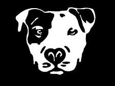 Small WHITE Vinyl Decal  Pit Bull face dog puppy truck sticker