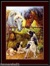 English Springer Spaniel Print Dog Horse Art Picture