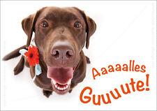 "DIN A6 Postkarte Glückwunschkarte, Geburtstagskarte Labrador Hund ""Alles Gute!"""
