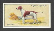 1936 UK Dog Art Body Portrait Ogdens Cigarette Card ENGLISH POINTER Field Point