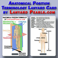 Anatomical Position Terminology Lanyard Badge Card | PVC Waterproof