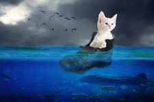 "perfect oil painting handpainted on canvas""a cat in a shoe in the sea ""N4180"