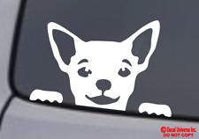 CHIHUAHUA FACE Vinyl Decal Sticker Car Rear Window Wall Bumper Dog Puppy Love