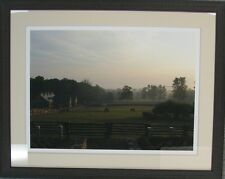 "Martha Stewart's framed photo print ""Friesian Horses Grazing"" 13/100 S/N L/E"