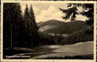1957 Stempel Ilmenau Landschaftspartie DDR s/w AK Blick auf eine Waldwiese
