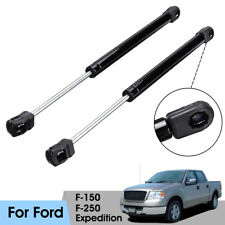 Pair Hood Lift Supports Shocks Struts Steel For Ford F-150 F-250 97-04
