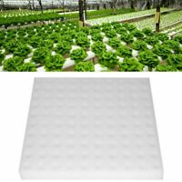 100x Schwamm Soilless Hydroponic Gemüse Sämlinge Cloning Pflanze Garten Kra W1L4