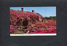 Postcard -c1969 View of Famous Rose Cottage, Chatham, Cap Cod, Massachusetts