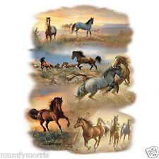 WILD HORSES HORSE  IRON ON T SHIRT TRANSFER
