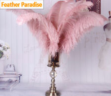 Dark Blush Pink 12 Pieces Ostrich Feather 12-14 inches Dozen Wedding Centerpice