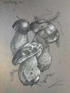 Porcini mushroom group botanical pencil pastel illustration ORIGINAL Drawing A4