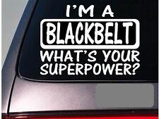 I'm a blackbelt sticker decal *E149* karate mma kickboxing judo belt