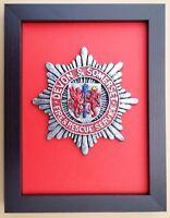 Large Scale Framed DEVON & SOMERSET FIRE & RESCUE SERVICE Cap Badge Plaque Model