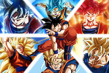 Dragon Ball Z/Super Poster Goku from Normal to Ultra, Vertical 12in x 18in