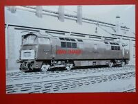 PHOTO  CLASS 52 WESTEN DIESEL LOCO NO D1001 WESTERN PATHFINDER (V2)