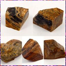 100% Natural Picture Jasper Rough Mineral Specimen NG15837-15851 Free Shipping