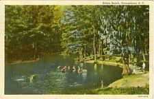 Orangeburg, OH Swimming at Edisto Beach 1951