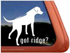 Got Ridge? |High Quality Rhodesian Ridgeback Vinyl Dog Decal Sticker