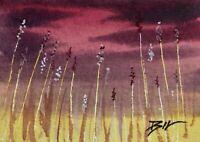 ACEO ATC original art miniature painting ' Tall Grasses ' by Bill Lupton