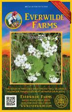 2000 Boneset Wildflower Seeds - Everwilde Farms Mylar Seed Packet