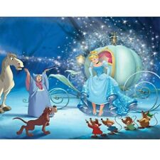 Diamond-Painting 5D Full Drill Cinderella Witch Handmade Cross Stitch Kits Art