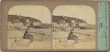 NICE La Plage Côte d'Azur Furne et TournierVintage albumine ca 1860