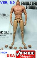 ZC Toys 1/6 Scale Muscular Nude Male Figure Body ver 2.0 TTM19 ❶USA❶