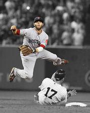 Boston Red Sox DUSTIN PEDROIA Glossy 8x10 Photo Spotlight Print Baseball Poster