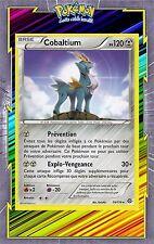 🌈Cobaltium -XY11:Offensive Vapeur-74/114-Carte Pokemon Neuve Française
