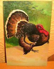 Truthahn Prägedruck P.F.B. Berlin antik Sammler Thanksgiving embossed post card