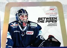 Teamset Pinguins Bremerhaven Serie 2 Bonus DEL Playercards 2017//18