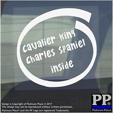 1 x Cavalier King Charles Spaniel all'interno-Finestra, Auto, Furgone, STICKER, SEGNO, Adesivo