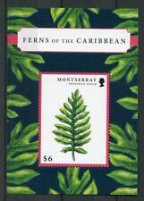 Montserrat 2012 MNH Ferns of Caribbean 1v S/S Plants Nature Stamps