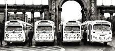 1960s Toronto Transit buses decorated for Christmas season 8 x 19 Photograph