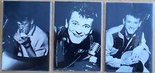 Gene Vincent Set of 3 large flexi magnets