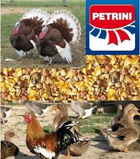 MANGIME GRANAGLIA PER GALLINE, POLLI, TACCHINI, OCHE, GRANBECCHIME PETRINI KG.25