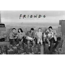 Friends Poster Skyscraper 127 Official Merchandise