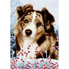 Winter House Flag - Red Merle Australian Shepherd 15202