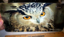 Beautiful OWL close up photograph Metal License Plate, made in the USA