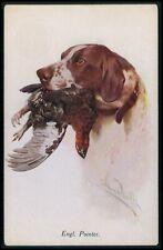 art Wardle dog English Pointer & pheasant bird original old 1910s postcard