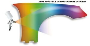Peugeot 307 Mudguard New IN Desired Color Painted Front Right/Left 2001-2005