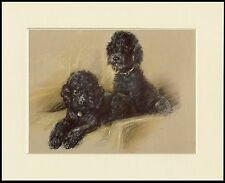 POODLE TWO LITTLE BLACK DOGS CHARMING DOG PRINT MOUNTED READY TO FRAME