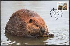 CANADA #2709a.2 - CANADA'S NATIONAL ANIMAL, THE BEAVER - BEAUTIFUL MAXICARD