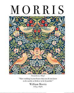 William Morris Unframed Art Wallpaper Pattern Prints