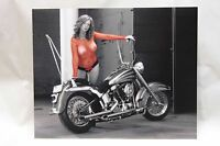 8x10 inch photo of biker babe in fishnets on Harley Softail!