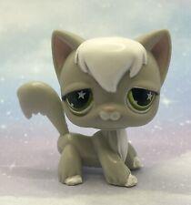 Littlest Pet Shop Authentic # 954 Gray White Angora Cat Green Star Eyes