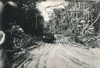 WWII 1940's USAAF Biak Air Field Photo jeep on jungle road